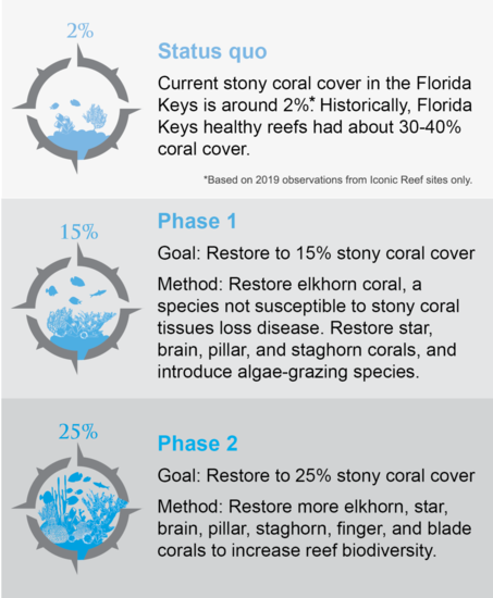Restoring Seven Iconic Reefs: A Mission to Recover the ...